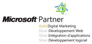 Logo Microsoft Partner Network